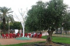 Charla 5-6-13. Dia Medio Ambiente. Guillermo Contreras (10)_1333x1000