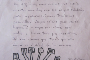 D asociacion2012FotosTrabajos ninos lectura poeticaIMG_8971_816x1200